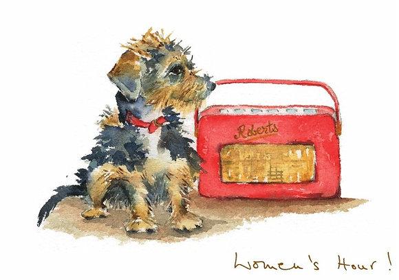 Terrier sitting next to red retro radio