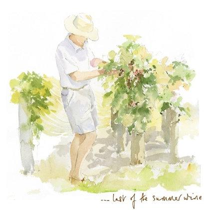 ...last of the summer wine (L P/39)