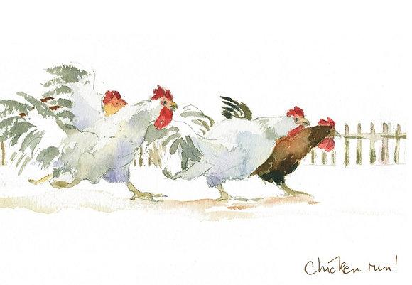 chickens dashing