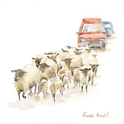 Rush Hour! (L CH/7)