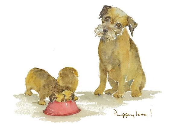 Puppy Love! (FL/71)