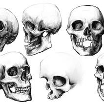 skulls_02.jpg