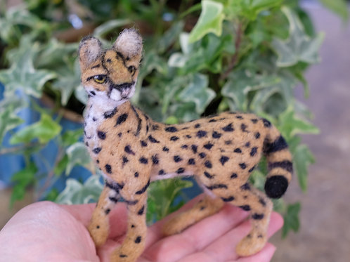 """African Serval Needle felted sculpture 4.5"""" Ready to Ship"""