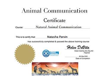animalcomdevita.jpg