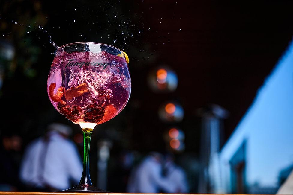 Gin de Frutos Rojos_086.jpg