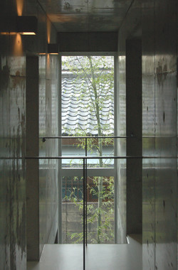 公園前の家  住宅  東京都杉並区  suginamiku Tokyo