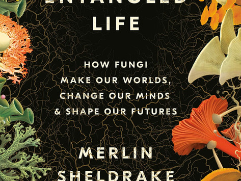 Book Recommendation  - The Fungi will save humanity