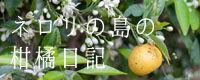 ネロリの島の柑橘日記