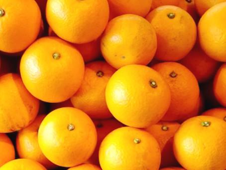 レモンより多い八朔のリモネン。その効果は?