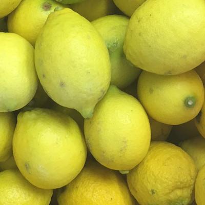 大長レモン