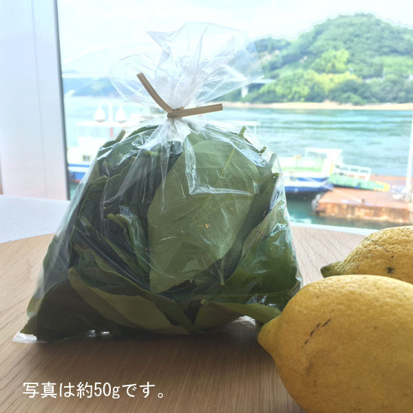 レモンが香るナチュラルリーフ