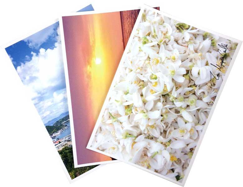 ネロリの島オリジナルポストカード