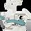 Thumbnail: Unidad dental Suntem Pegaso piel ST-D307