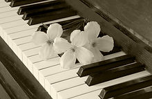 Flowers on piano - condolence card - wih