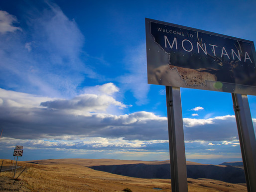 Starting A New Business The Right Way With A Montana LLC