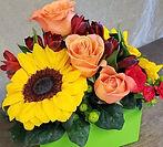 Flowers by Gillian_edited.jpg