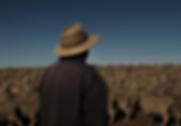 Screen-Shot-2018-10-13-at-16.10.02.png