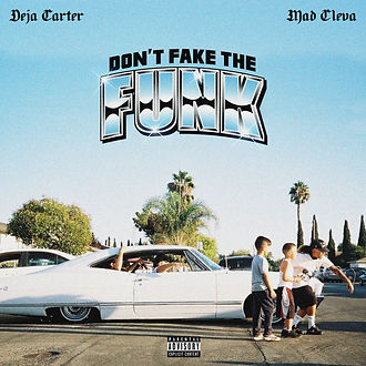 dont fake the funk cover - Deja Carter.j