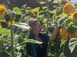 VetiverinSunflowers