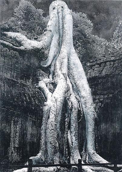 タプロームの樹霊.jpg