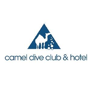 camel dive.jpg