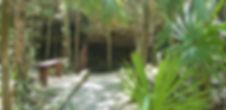 Cenote-Quantana-Roo.jpg