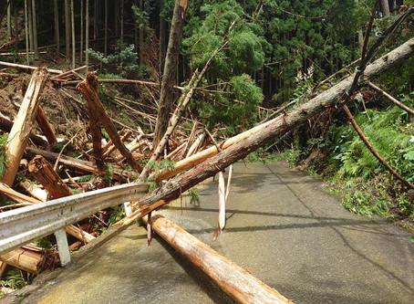 豪雨による高槻市の被害