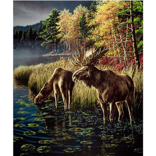 WF One of a Kind Moose Lake Panel