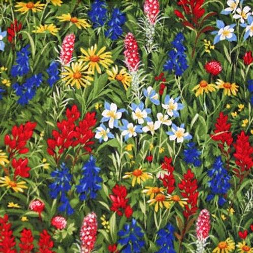 MD Wildflower Favorites