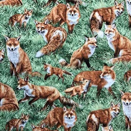 FQ American Wildlife-Red Foxes