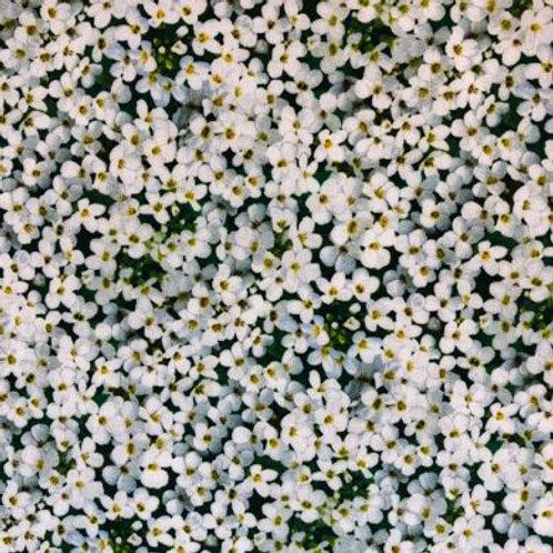 ES Landscape Medley - Flowers