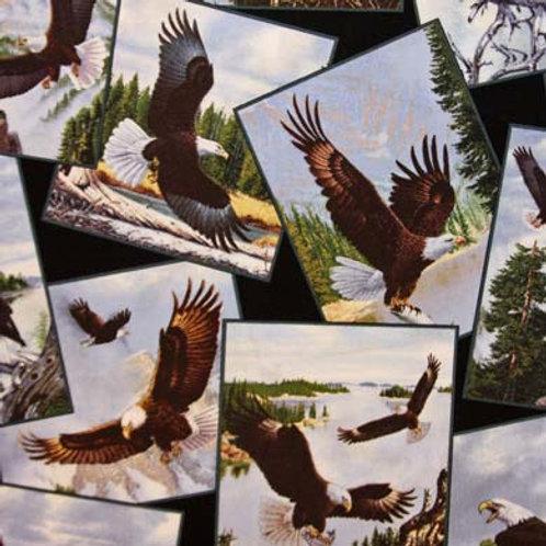 ES Majestic Bald Eagles