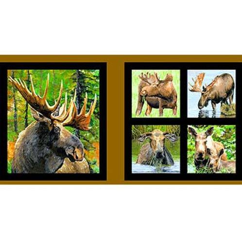 EQ Moose Panel