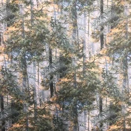 NC Mama Bear- Trees