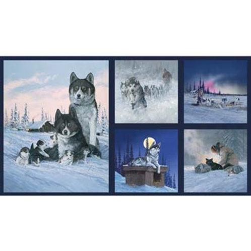PB Alaska Sled Dogs Panel
