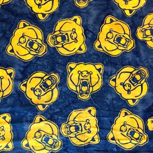HF Bartlett High Golden Bears