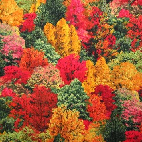 ES Landscape Medley -Autumn Treescape