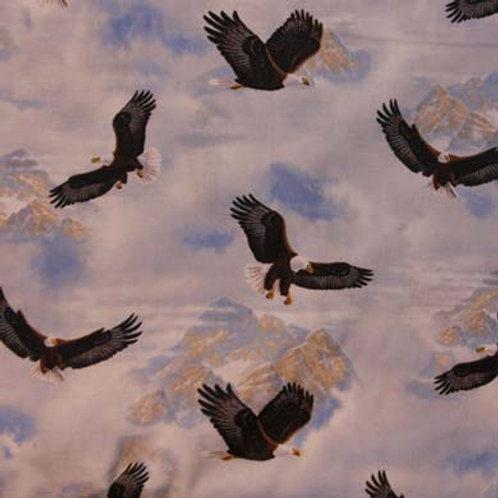 NC Eagle Pass