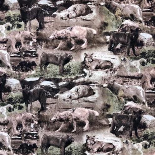 HG Yellowstone - Wolves