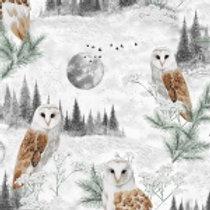 HF Owls