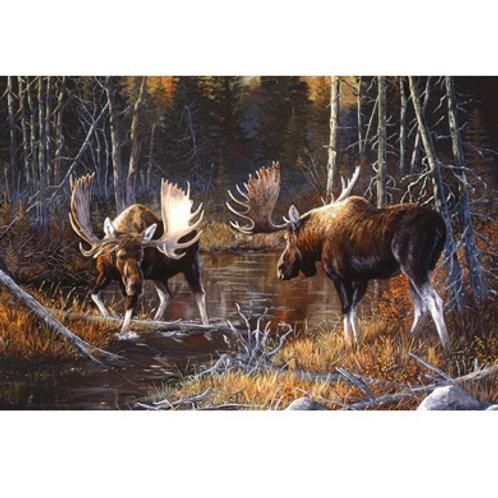 NC Majestic Moose Printed Panel