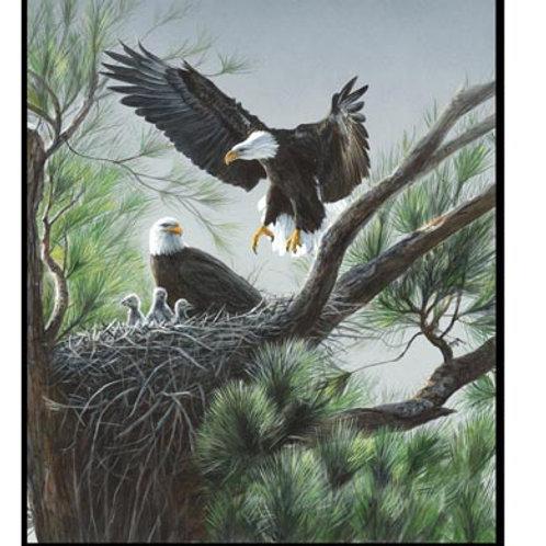 WI Eagle's Nest Panel