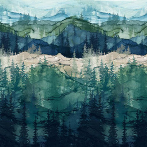NC Whispering Pines Landscape
