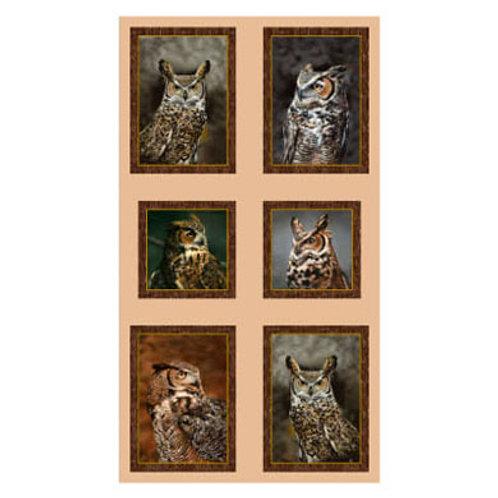 QT Nocturnal Wonders Owl Panel