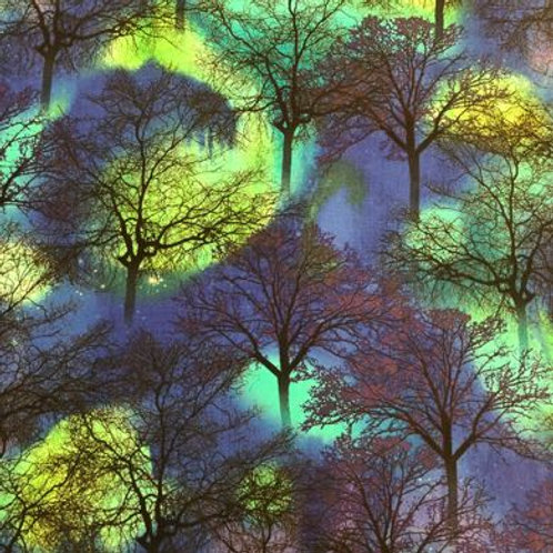 TT Northern Lights/Trees