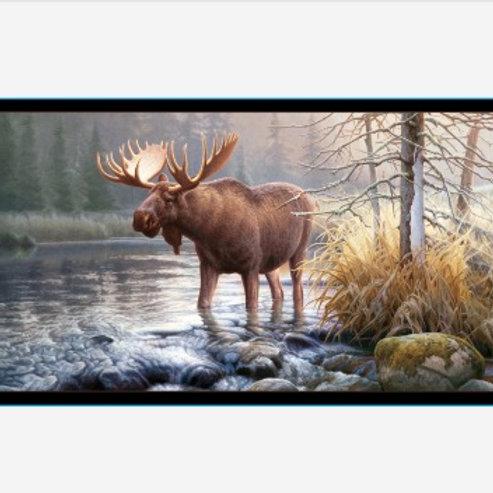 ES Morning Glory - Moose Panel