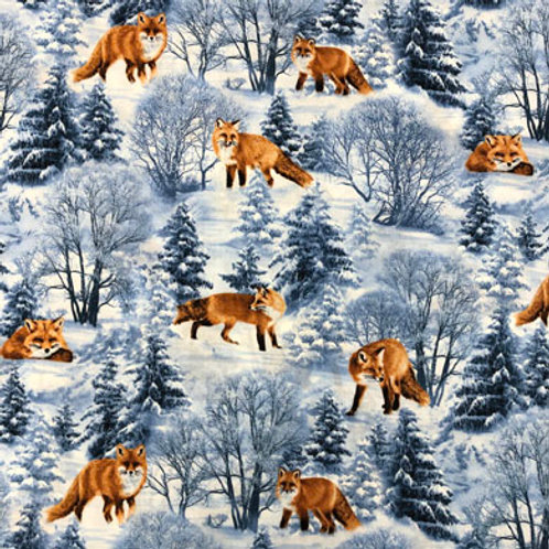 TT Winter Foxes