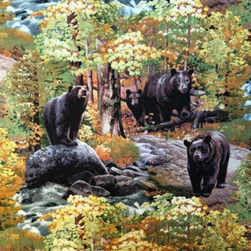 ES Black Bear Autumn