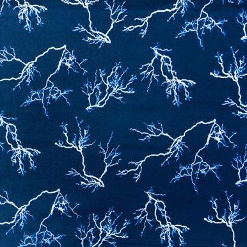 BL Natural Treasures - Lightning