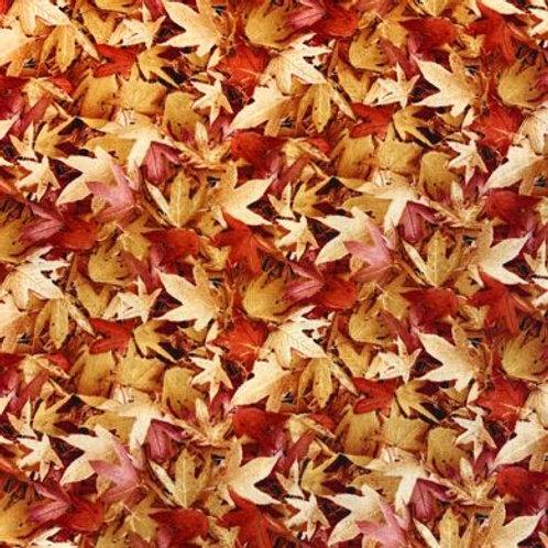 BL Natural Treasures -Autumn Leaves